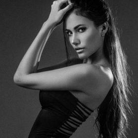 Hennessy Rodriguez Model