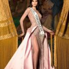 Nariman Battikha Brown Gown